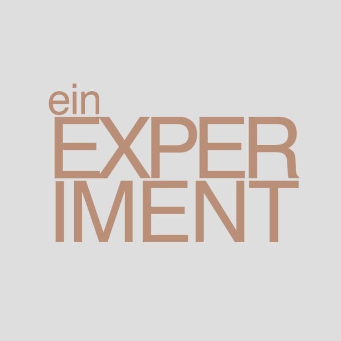 """""""Ein Experiment"""" von Volker Zill"""