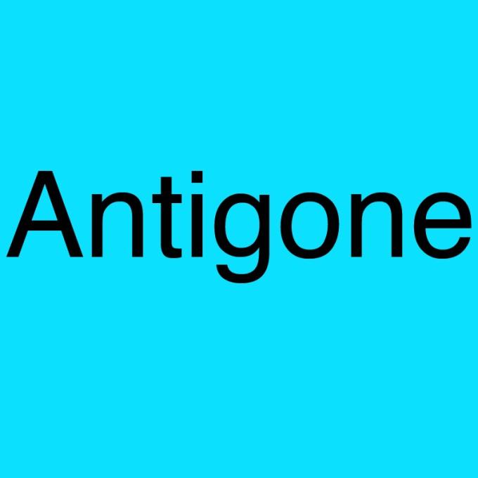 """""""Antigone"""" von Cornelius Hirsch"""