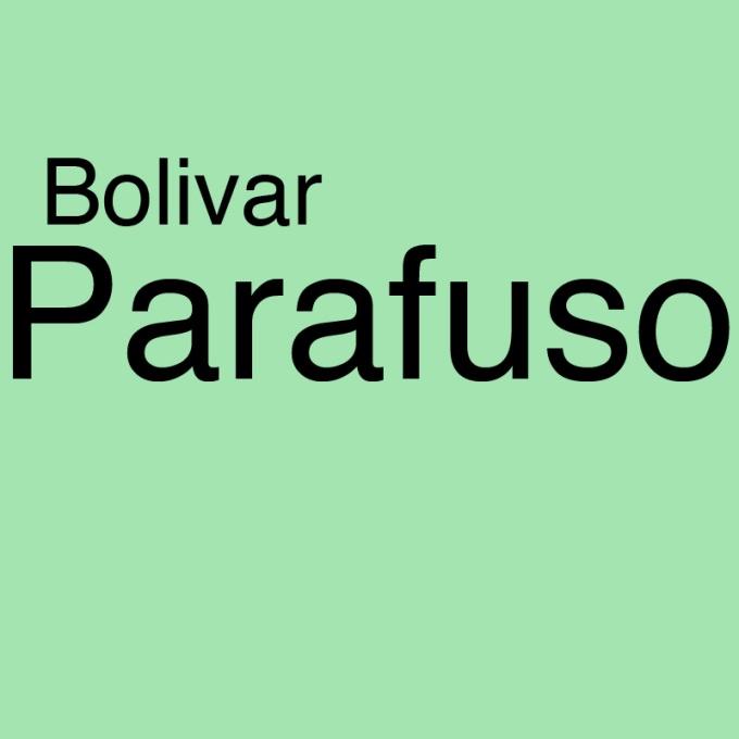 """""""Bolivar Parafuso"""" von Matthias Weißert"""