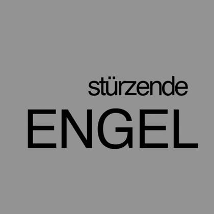 """"""" Stürzende Engel """" von Heribert Braun"""